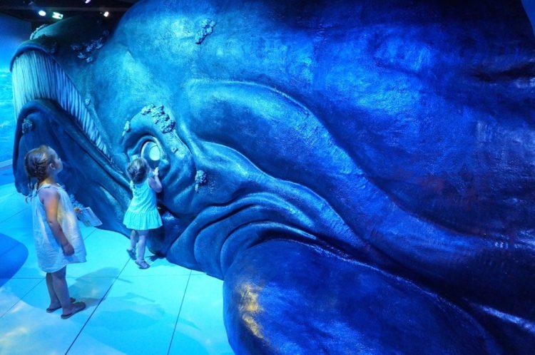walvisweken Scheepvaartmuseum