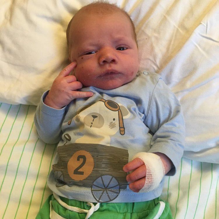 Vlak Na De Geboorte Wordt Juup Opgenomen Met Krentenbaard Mama Is